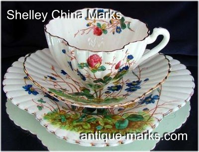 Shelley Marks - Wileman Foley China Trio c1886