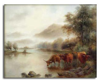 Worcester Stinton Highland Cattle Landscape