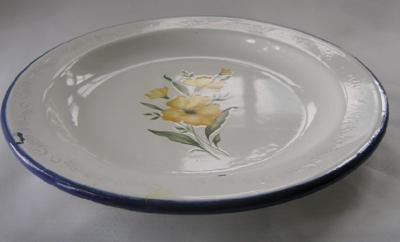 Floral Transfer on Enamel Plate